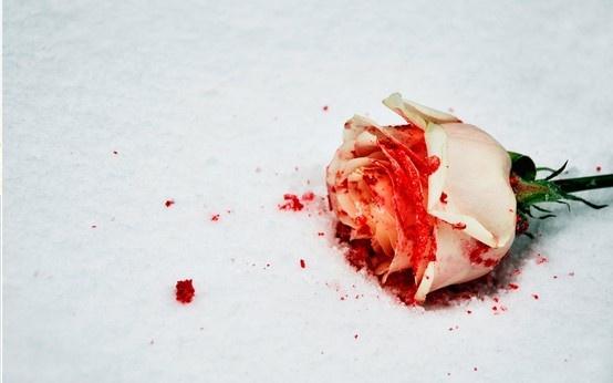 00 Bloody Rose
