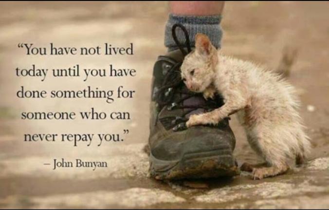 John Bunyan Quote Macro