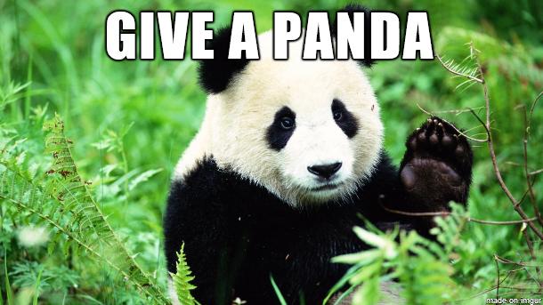 panda-award