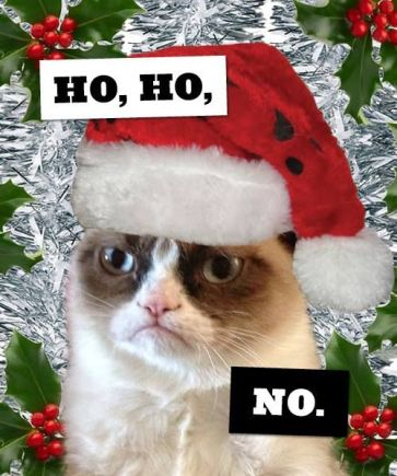 grumpy-cat-christmas-no