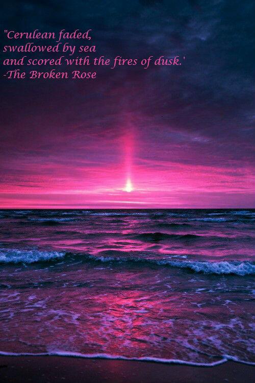 Ocean sunset macro